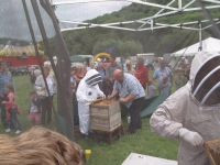 Gareth doesn\'t need a bee suit!